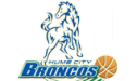 Home City Broncos
